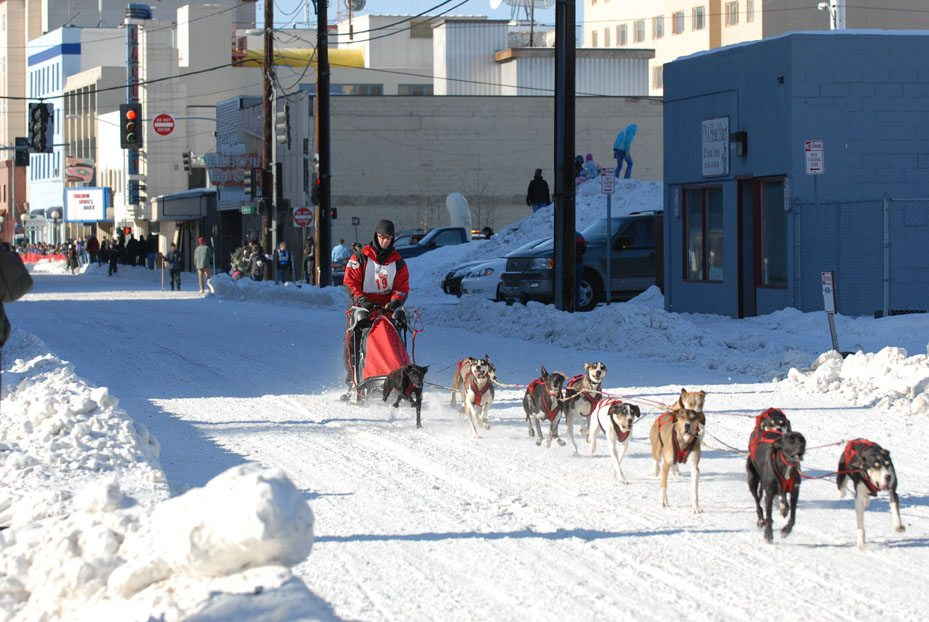 Dog sled race in downtown Fairbanks, Alaska