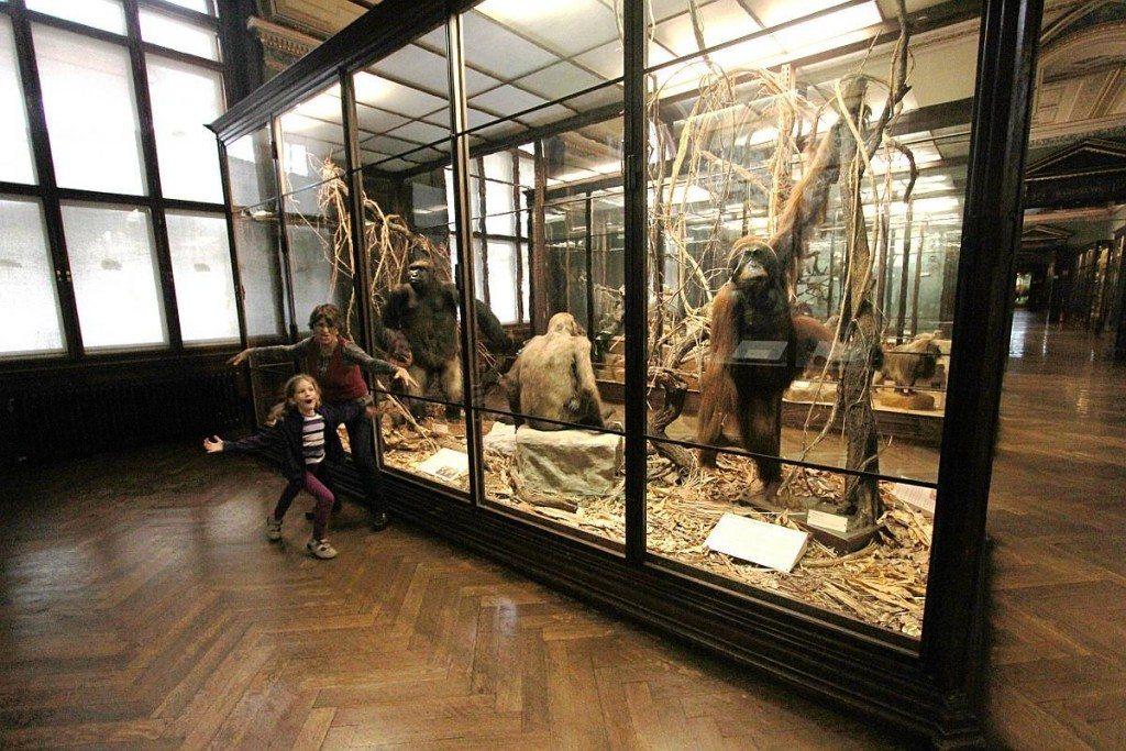 Desjardins history museum mn hours