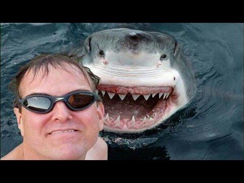 sharksmile
